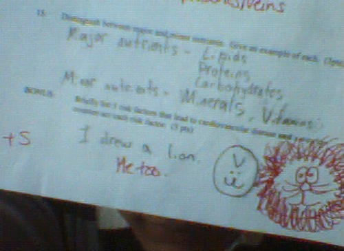 funny-exams-03