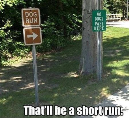 7-that-will-be-a-short-run