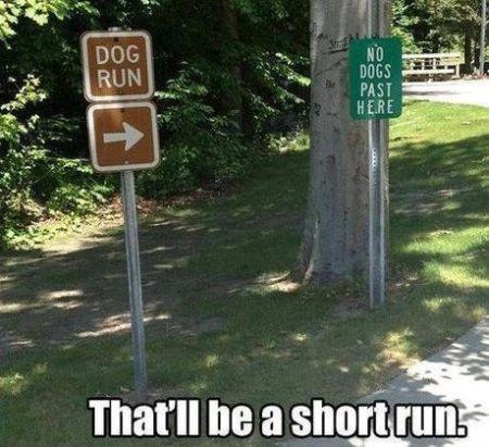 7-that-will-be-a-short-run