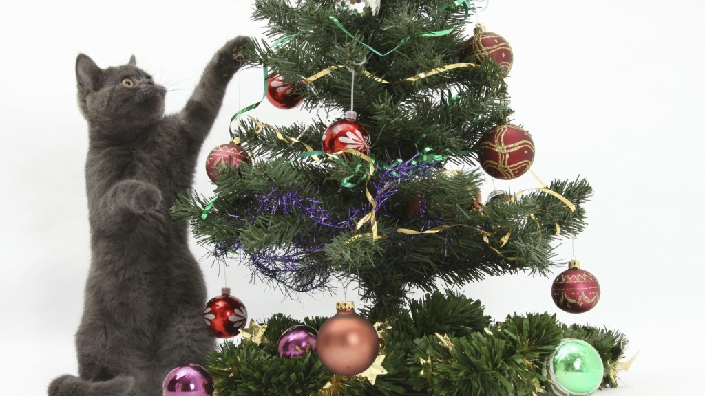 Cat reaching into a Christmas tree