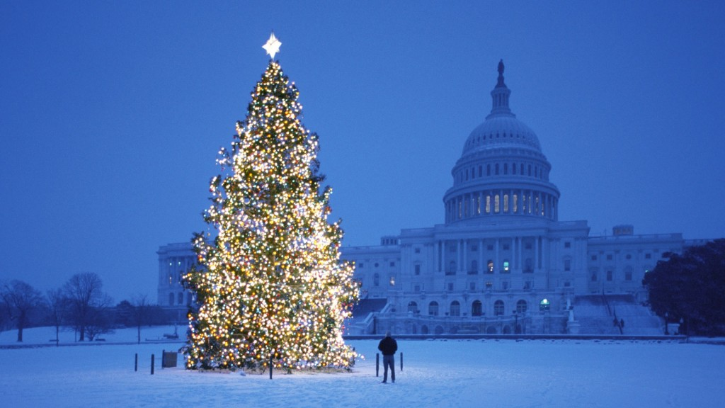 Christmas tree in front of the capital building
