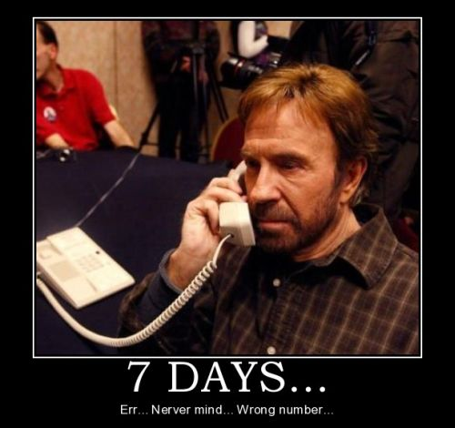 chuck-norris-the-ring-7-days