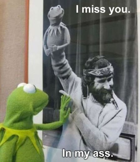 funny-I-miss-you-kermit-meme