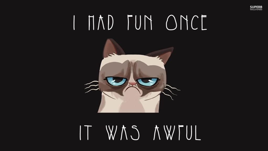 Grumpy cat once had fun