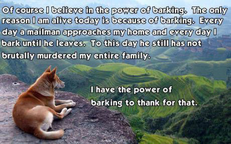 The power of a dogs bark
