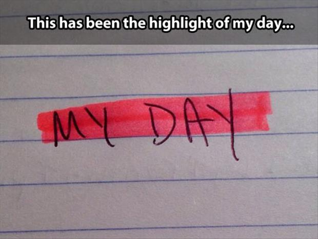 The highlight of your day