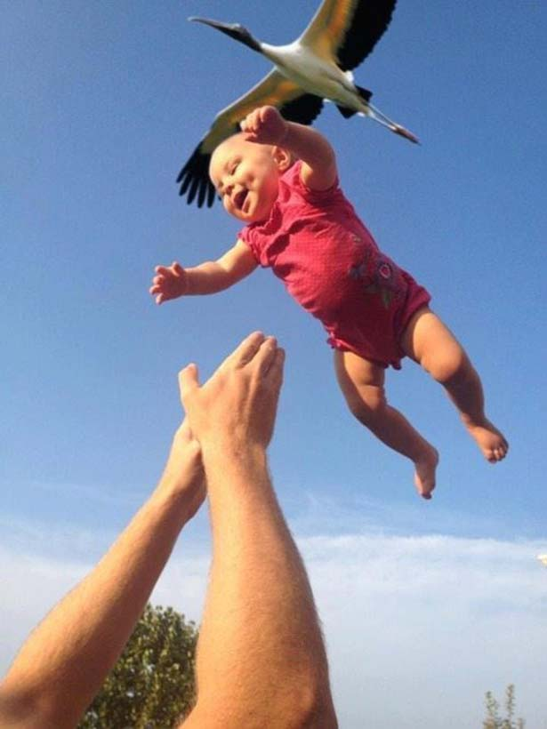 Great way to catch a baby that a bird has dropped