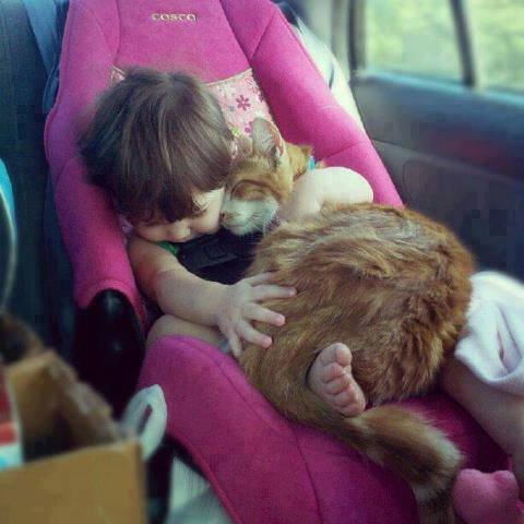 cute-kid-and-cat-01