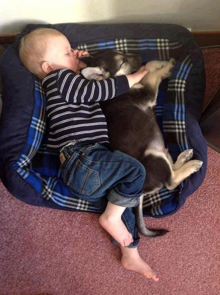 cute-kid-and-dog-01