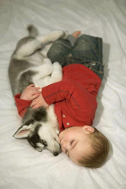 cute-kid-and-dog-02