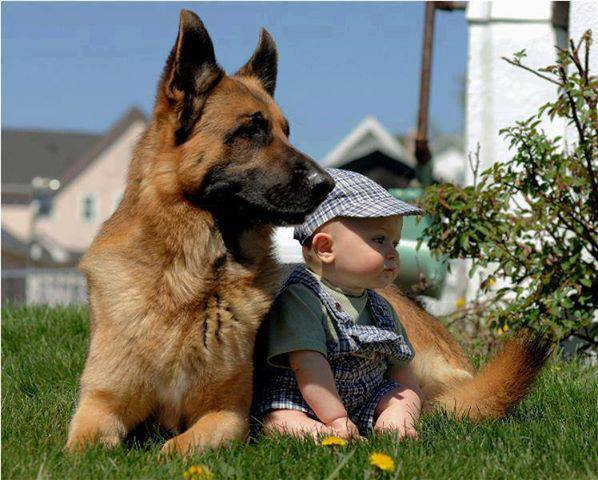 cute-kid-and-dog-03