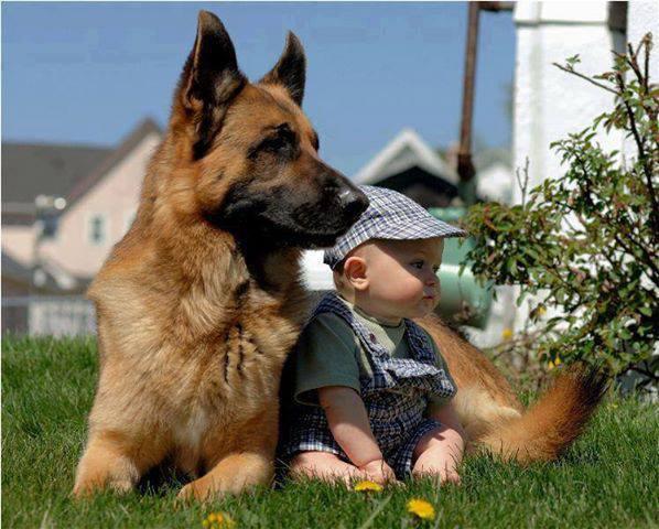 cute-kid-and-dog-03
