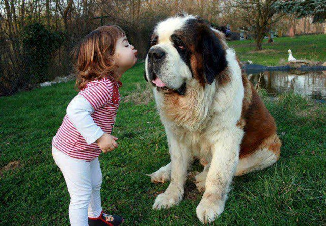 cute-kid-and-dog-04