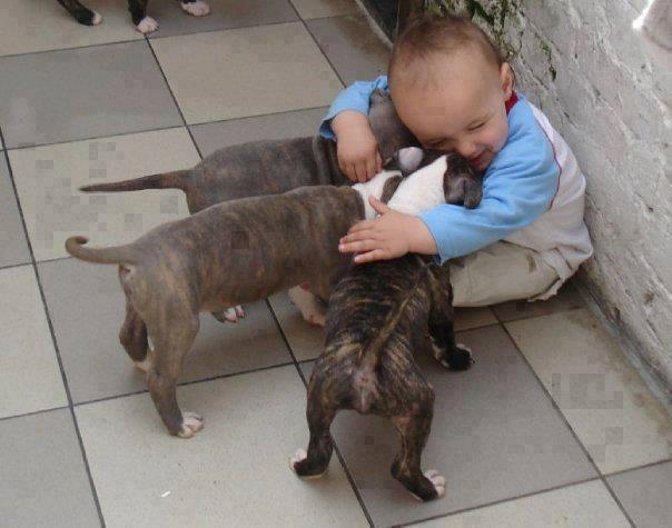 cute-kid-and-dog-05