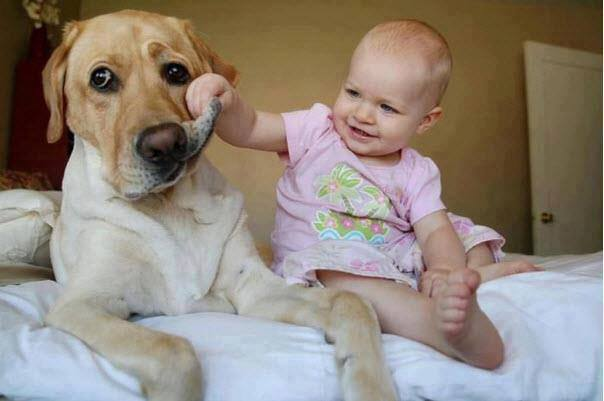 cute-kid-and-dog-07