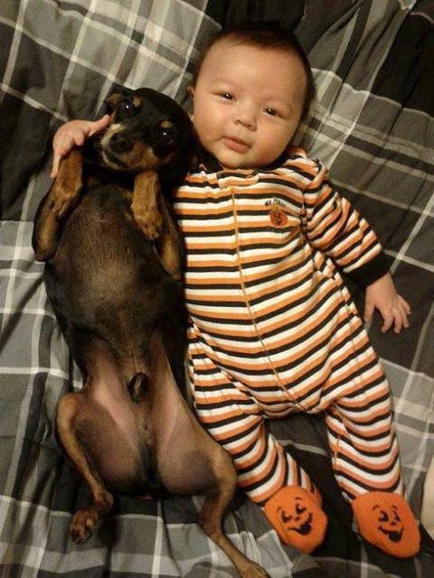 cute-kid-and-dog-08