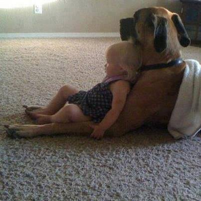 cute-kid-and-dog-09