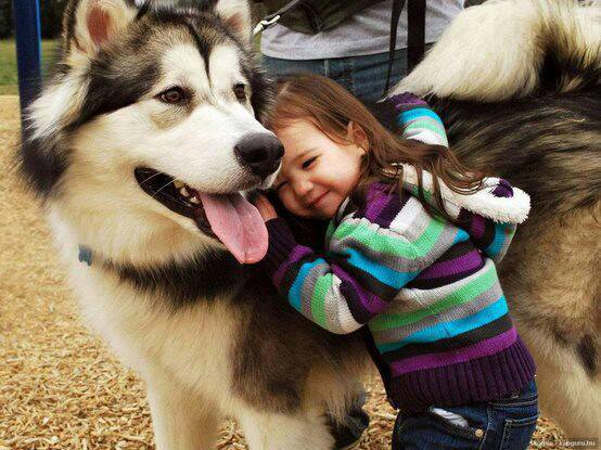 cute-kid-and-dog-10