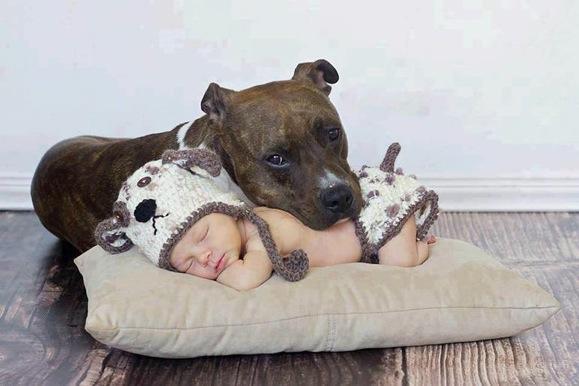 cute-kid-and-dog-11