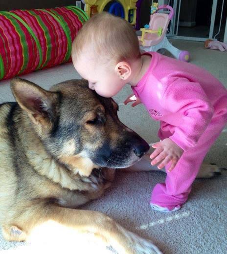 cute-kid-and-dog-13