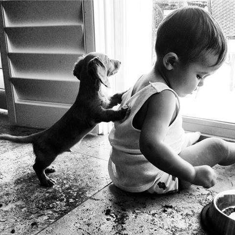 cute-kid-and-dog-14
