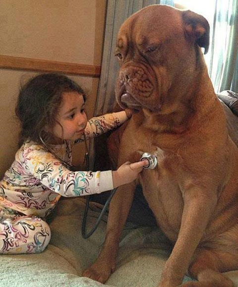cute-kid-and-dog-15