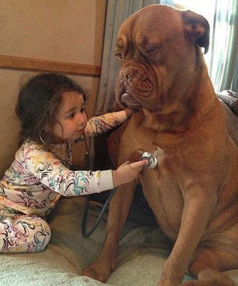 cute-kid-and-dog-15