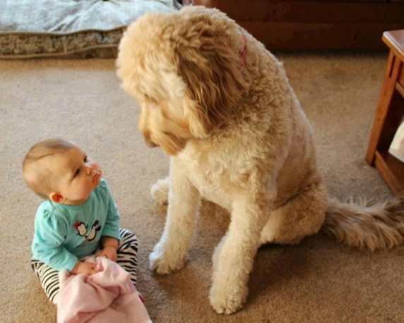 cute-kid-and-dog-16