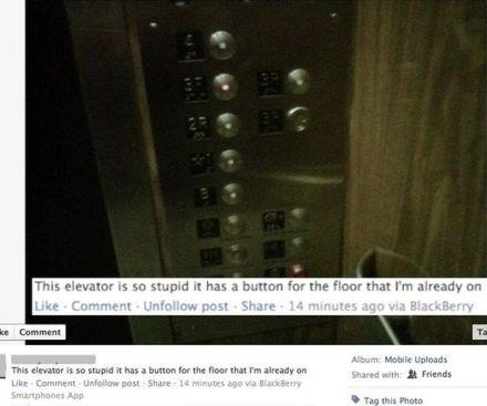 Hm, should Facebook have an IQ test?