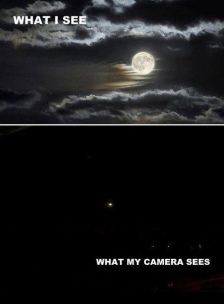 Damn cameras