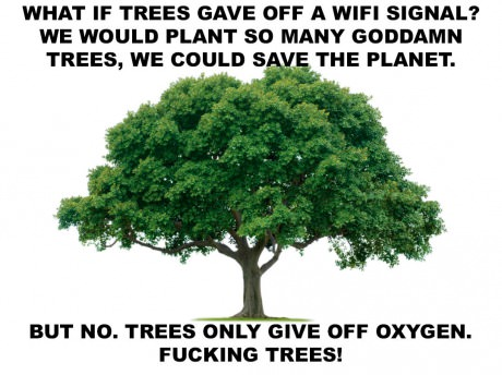 We should all be planting more trees anyway to be fair