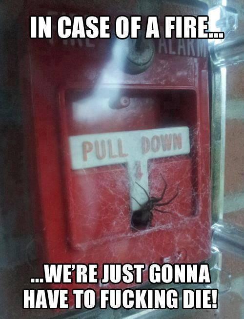 Yup, we'll die